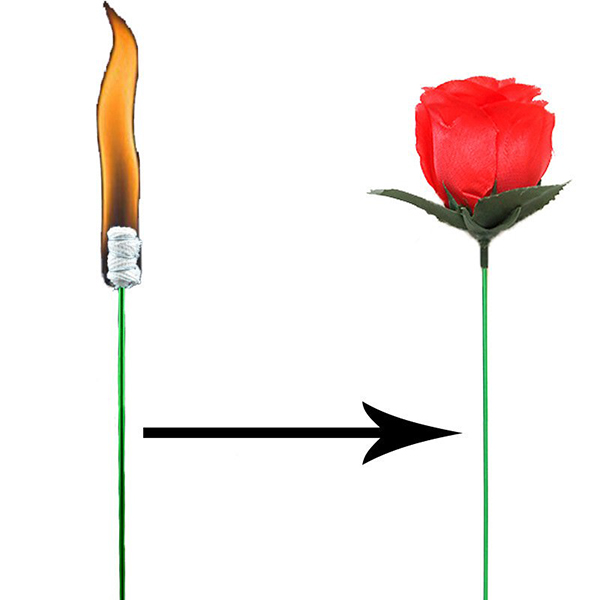 Torch To Rose - Plus